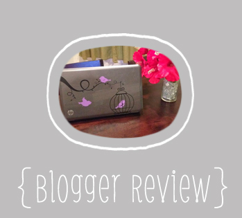 Blogger Review- Birdcage & Birds Laptop Decal