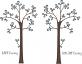 TREE604 Nursery Tree