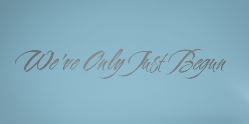 We've Only Just Begun Decal