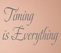 Timing Is Everything Wall Decal Item