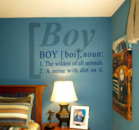 Boy Definition Decal