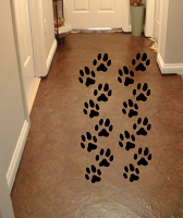 Paw Print Pack Wall Decal